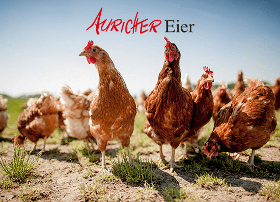 Auricher Eier