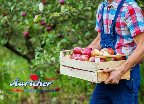 äpfel Abgeben Saft Bekommen